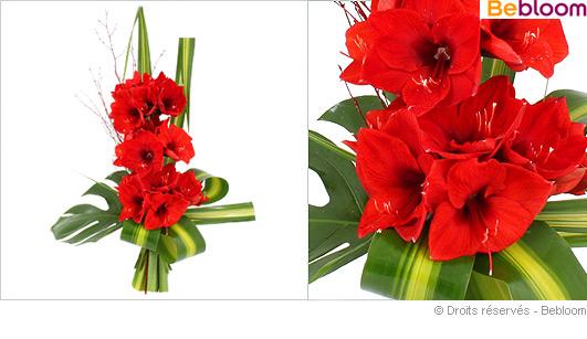Bouquet d amaryllis for Amaryllis en bouquet