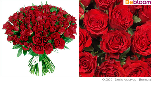bouquet-101-roses-rouges.jpg