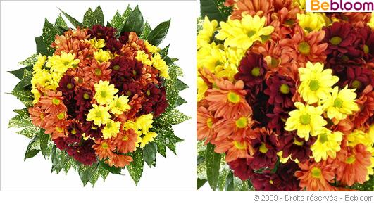 bouquet-compassion.jpg