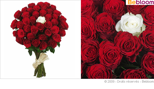 Bouquet diamant - Bouquet rose rouge et blanche ...