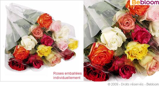 bouquet-solo-grosso.jpg