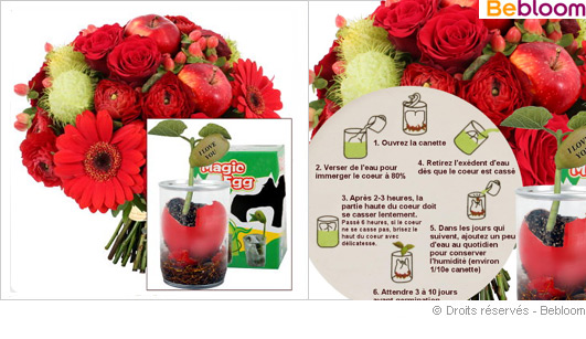 bouquet-saint-valentin-messager.jpg