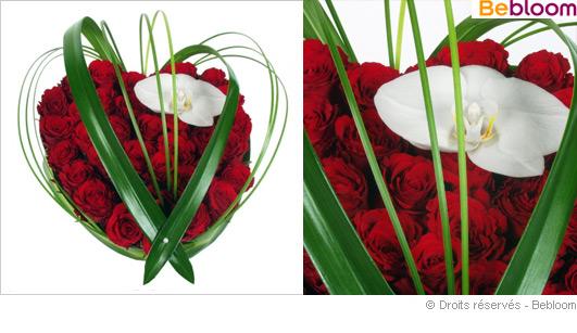coeur-de-rose-orchidee.jpg