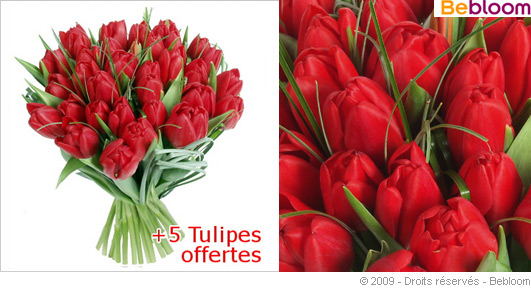 tulipes-rouges-saint-valentin.jpg