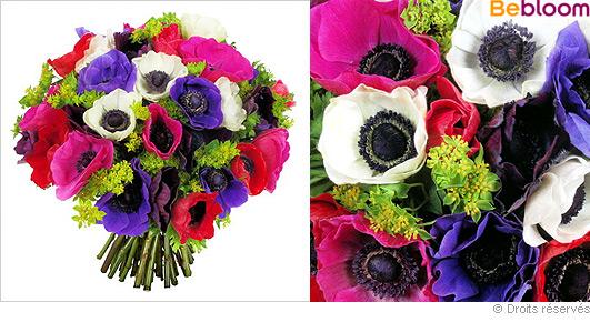 livraison-fleurs-anemones.jpg
