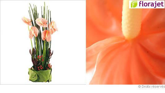 livraison-fleurs-bouquet-exotique.jpg