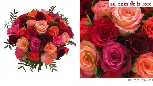 Offrir des roses for Offrir des roses