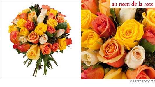 Bouquets de 20 a 30 euros part 14 for Bouquet de fleurs 30 euros
