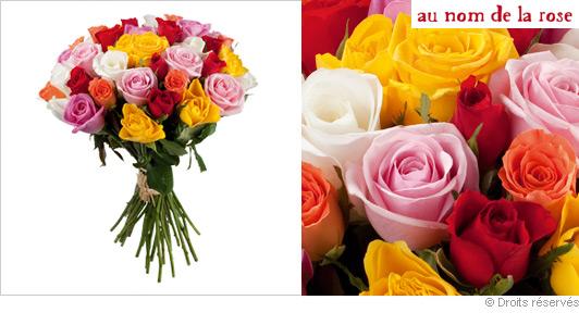 offrir-des-roses-multicolore.jpg