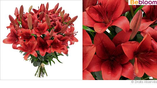 offrir-bouquet-saint-valentin-lys-rouge.jpg