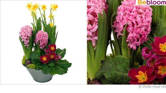 composition de fleurs offrir pour une f te pictures to. Black Bedroom Furniture Sets. Home Design Ideas