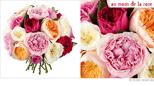 Roses anglaises for Offrir des roses