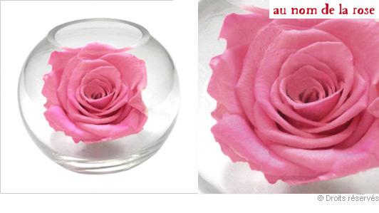 rose-stabilise-vase-boule.jpg