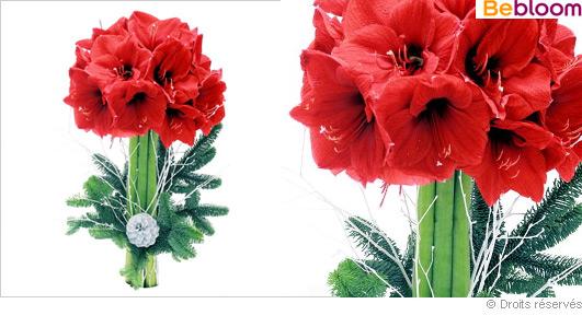 bouquet-haut-noel.jpg