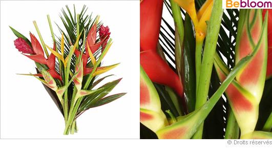 bouquet-exotique-jungle.jpg