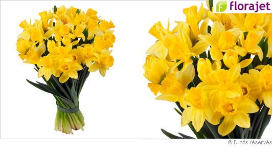 livraison-bouquet-fleurs-jonquilles.jpg