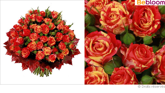 Bouquet de roses d automne - Bouquet d automne ...