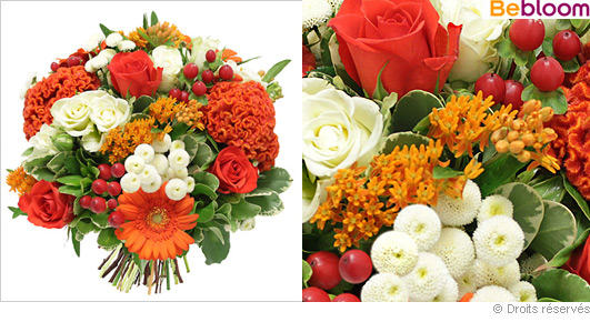 Offrir des fleurs part 7 for Offrir des fleurs