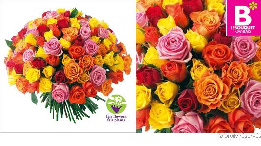 Offrir des roses part 7 for Offrir des roses