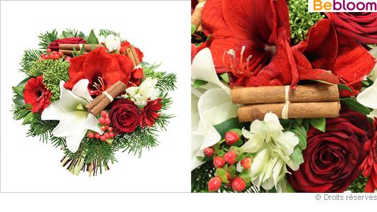 Livraison de fleurs pour les f tes de no l for Amaryllis pour noel