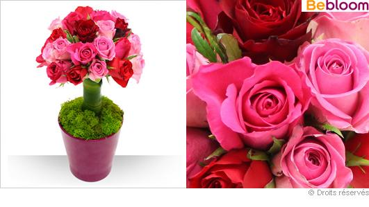 Arbre de roses pour la Saint valentin