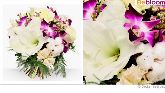 Bouquet de fleurs d'hiver