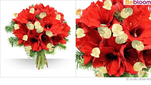 bouquet-amaryllis-noel