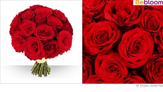 Livraison de roses rouges gros boutons