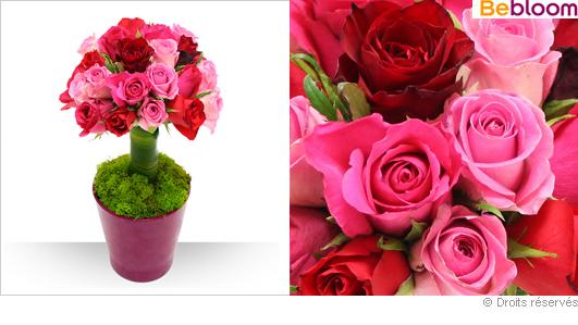 Bouquet en pot for Offrir des roses