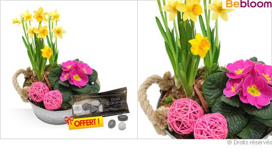 Composition fleurie jonquilles, primevères, fête des grand-mères