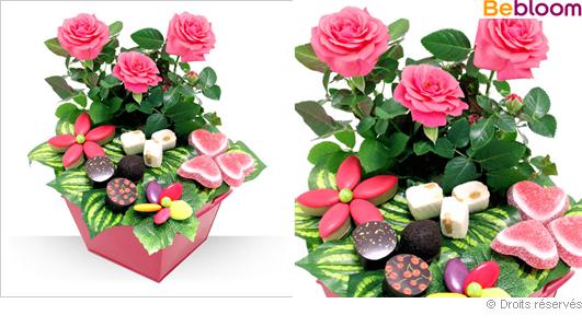 Offrir un rosier gourmand pour la fête des mères !