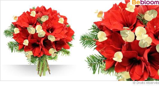 Livraison bouquet de fleurs amaryllis de Noel