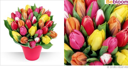 Offrir des tulipes, livraison à domicile fleurs
